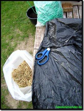 Oorwurmen nest