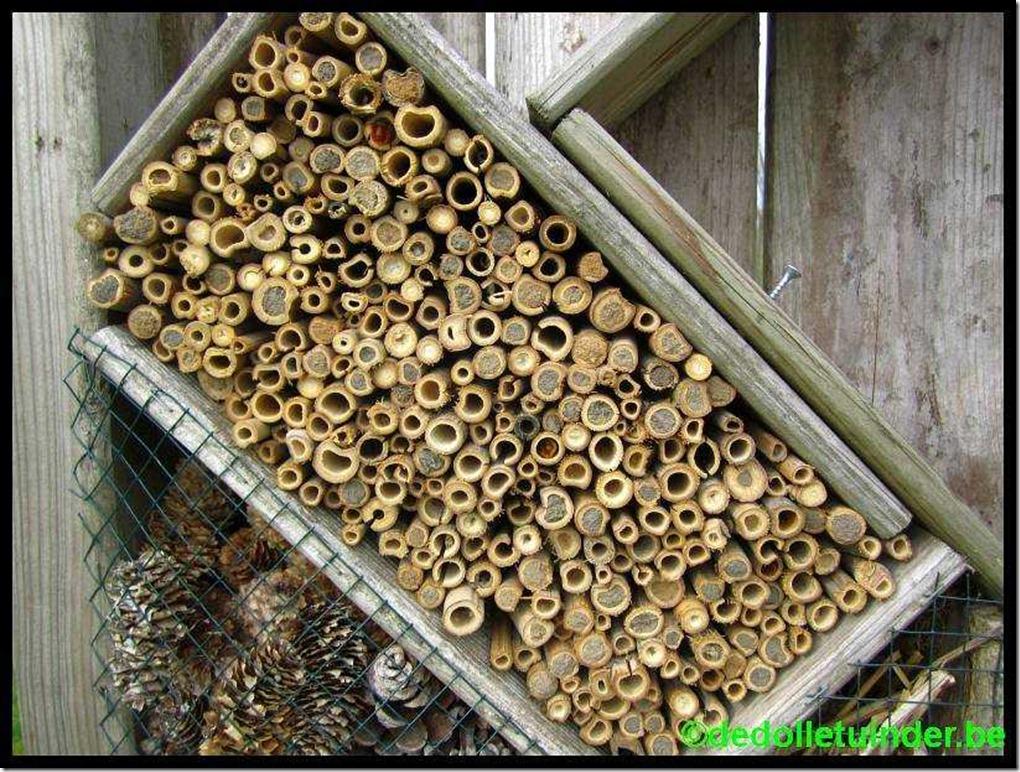Gesneden bamboestokken